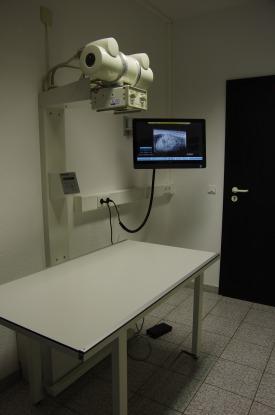 Tierarzt Tierarztpraxis Hachenburg Westerwald Gerhardus Kleintiere Kardiologie Zahnbehandlung Röntgen Ultraschall Labordiagnostik