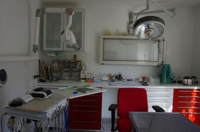 Tierarzt Gerhardus Hachenburg Westerwald Kleintiere Zahnbehandlung Kardiologie